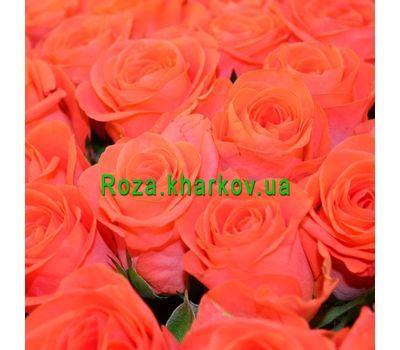 """""""Оранжевые розы поштучно"""" в интернет-магазине цветов roza.kharkov.ua"""