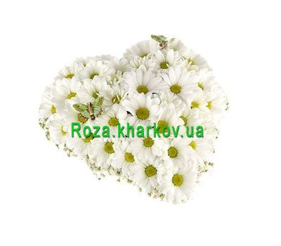 """""""Сердце из хризантем"""" в интернет-магазине цветов roza.kharkov.ua"""