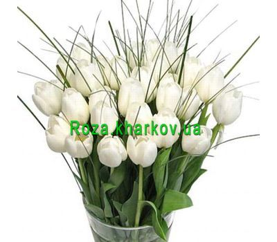 """Tulips"" in the online flower shop roza.kharkov.ua"