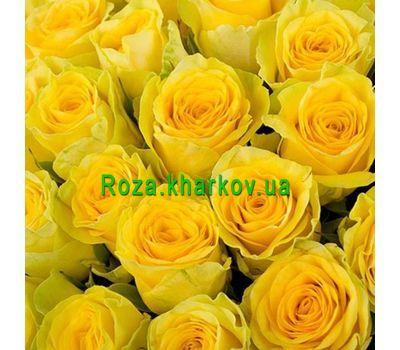 """""""Желтые розы поштучно"""" в интернет-магазине цветов roza.kharkov.ua"""